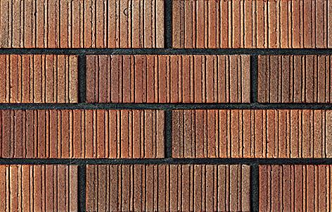 Clay Tile|Wall Brick WHLS6316